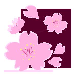 桜01.png
