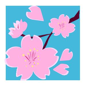 桜02.png